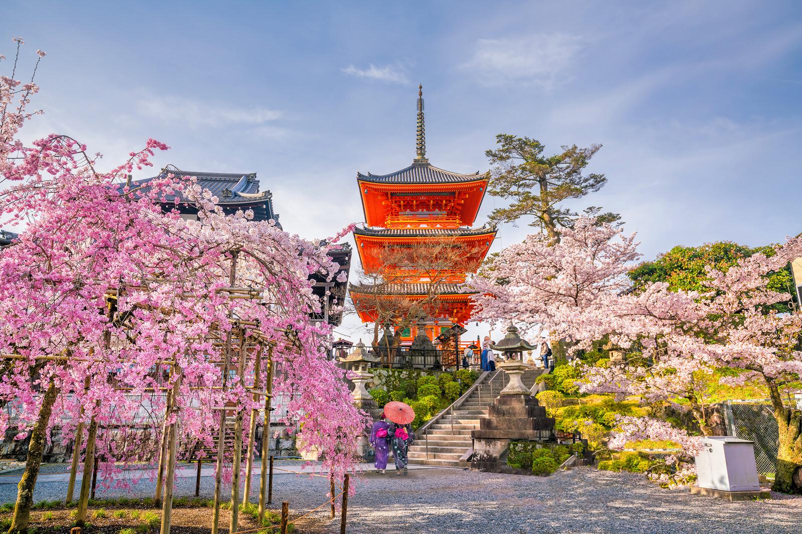 Картинки по запросу Киото фото